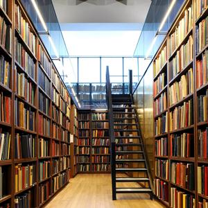 Библиотеки Медвенки